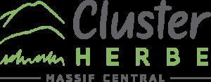 cluster-logo-retina